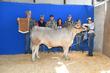 19JW-CattleBD-2917.jpg