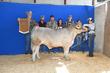 19JW-CattleBD-2918.jpg