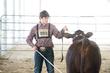 19JW-CattleHS-3878(1).jpg