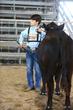 19JW-CattleHS-3940.jpg