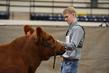 19NC-Cattle-8554.jpg