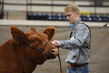 19NC-Cattle-8556.jpg