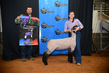 19NC-Lambs-7341.jpg