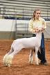 19NC-Lambs-7979.jpg