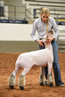 19NC-Lambs-8048.jpg