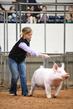 19NC-swine-9318.jpg
