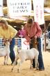19SC-Goats-7710.jpg
