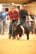 19SC-Swine-5531.jpg