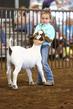 19WT-GoatHS-7431.jpg