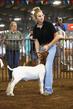 19WT-GoatHS-7433.jpg