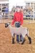 20GO_SheepHS_7765.jpg