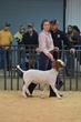 20HCC - Market Goat Showmanship-3034(1).jpg