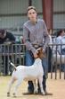 20HCD - District Market Goats-4484.jpg
