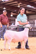 20HCD-BreedingSheep-7680.jpg