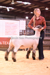 20HCD-BreedingSheep-7765.jpg