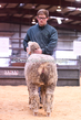 20HCD-BreedingSheep-7895.jpg