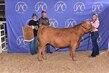 20JW-CattleBD-7091.jpg