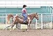 20JW_Horse_5443(1).jpg