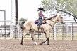 20JW_Horse_5444(1).jpg