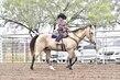 20JW_Horse_5445.jpg