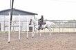 20JW_Horse_5514.jpg