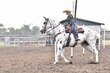 20JW_Horse_5516.jpg