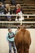 20LC-CattleHS-1136(1).jpg