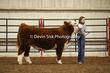 20LC-CattleHS-1296(1).jpg