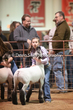 20LC-Lambs-2165.jpg