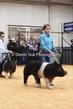 20LC-SwineHS-0960(1).jpg