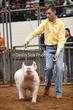 20NC-SwineHS-0926.jpg