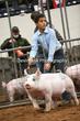 20NC-SwineHS-1110.jpg