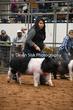 20NC-SwineHS-1526.jpg