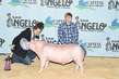 20SA-SwineBD2-7644.jpg