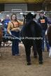 20SC-Cattle-4800.jpg