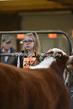 20SC-Cattle-4921.jpg