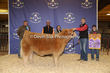 20SC-Cattle-6474.jpg