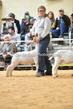 20SC-GoatHS-2-10(1).jpg