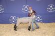 20SC-Lamb-5914.jpg