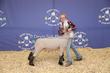 20SC-Lamb-5917.jpg
