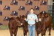 21BC-CattleBD-0905.jpg