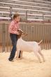 21BC-GoatSMS-0642.jpg