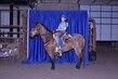 21KK-HorseBD-2612.jpg