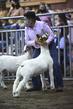 21KKC- Market Goat Showmanship HS-2522(1).jpg