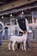 21KKC- Market Lamb Showmanship HS-5665(1).jpg