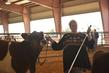 21KenCo-CattleHS-9639.jpg