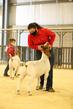 21Kerr-GoatDrive-4045.jpg