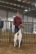 21TC- Market Goat HW-HS-7224.jpg