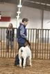 21TC- Market Goat Showmanship-HS-7374.jpg