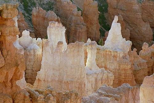 Glowing Hoodoos Bryce Canyon N.P. Utah 7-04.jpg